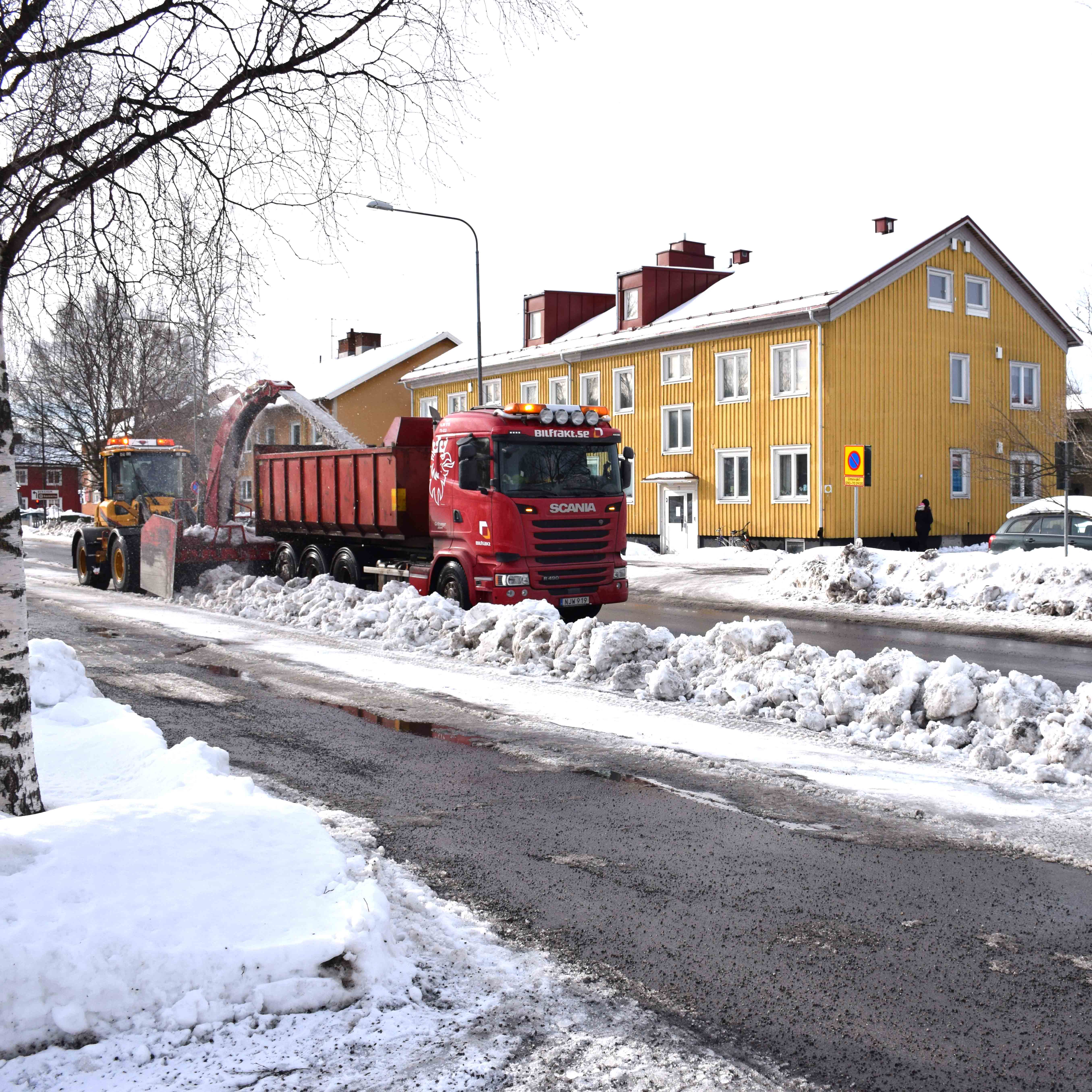 Snöslungning på Haga