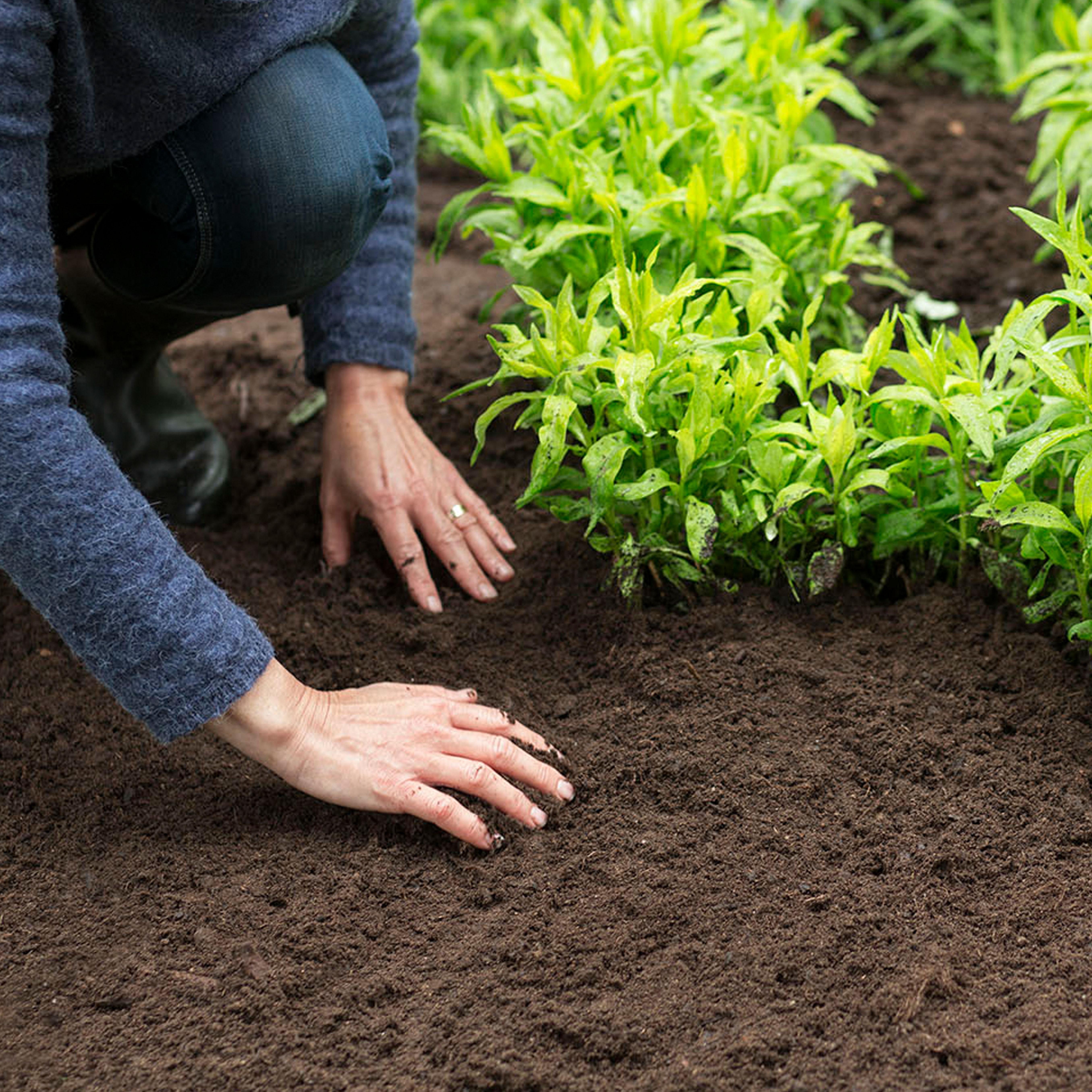 Funderar du på vilken typ av jord du behöver till ditt projekt?